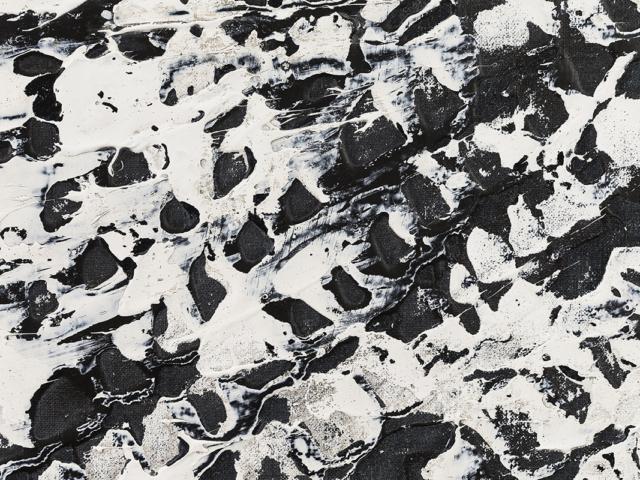 Skin Detail - Joshua Bonson